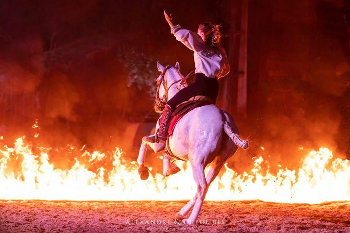 Cavalière avec son cheval